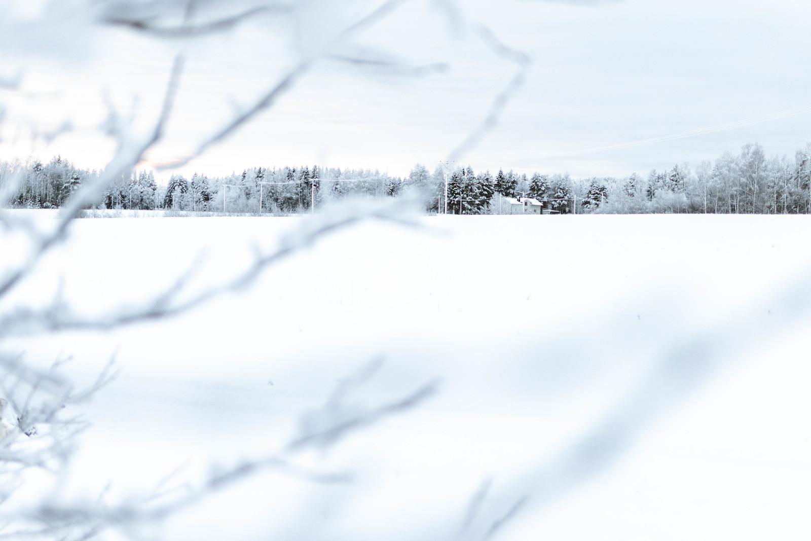 191223 - Eldsmark dan före dan