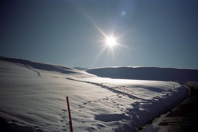 Portra Snow Dunes  (Portra 400)
