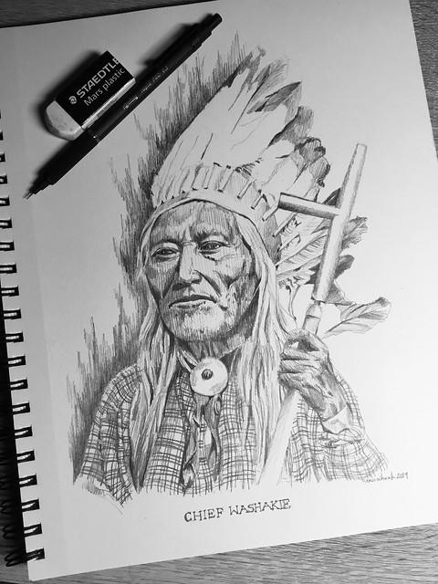 Native American Chief series Chief Washakie