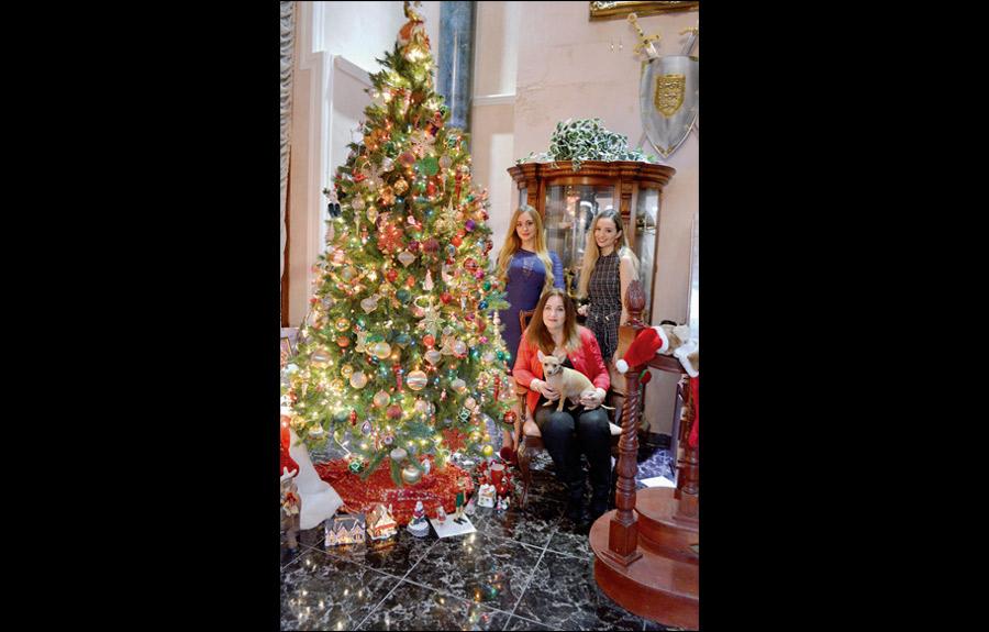 Brillo de navidad