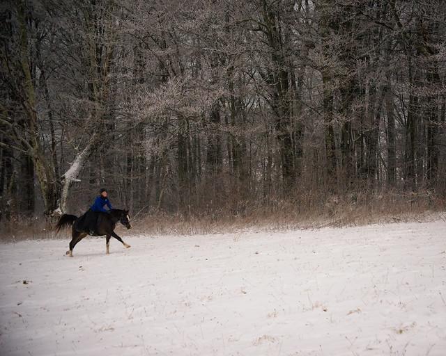 20191215 Snow Gallops_26