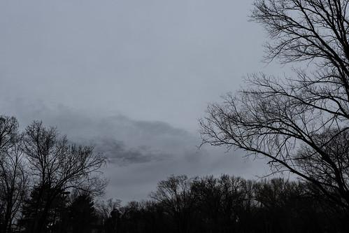 gray_sky_20191223_100
