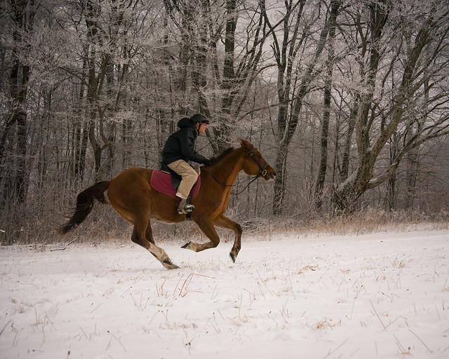 20191215 Snow Gallops_23