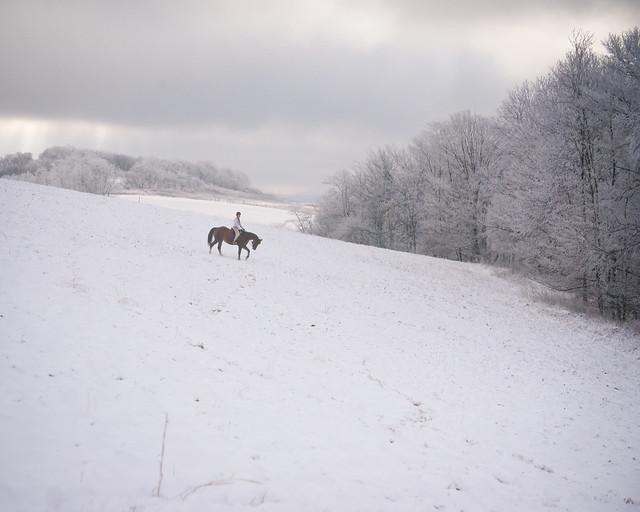 20191215 Snow Gallops_83