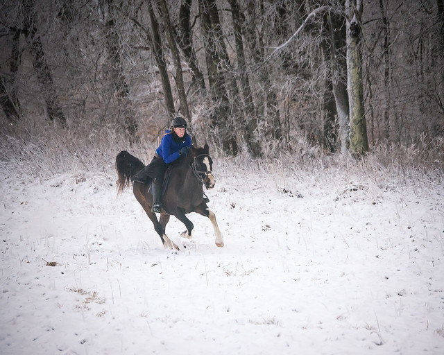 20191215 Snow Gallops_126