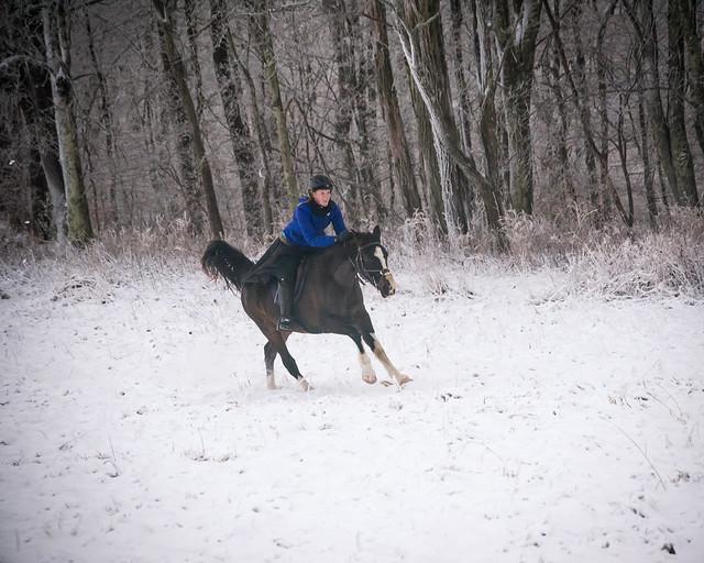 20191215 Snow Gallops_127