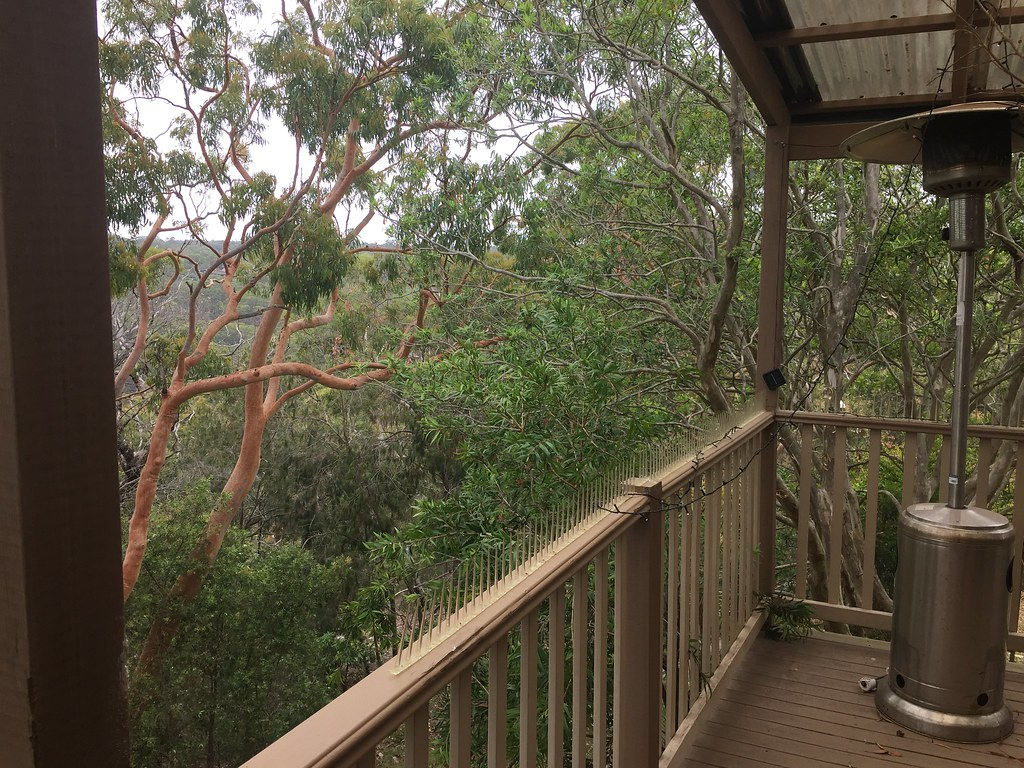 The sisters house in the trees Engadine NSW