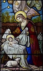 Nativity (Ward & Hughes, 1890s)