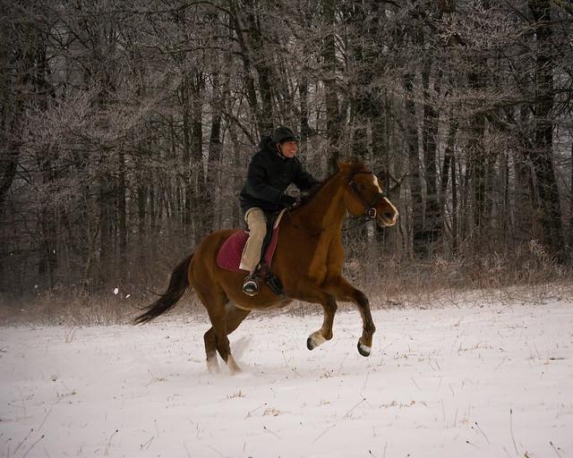 20191215 Snow Gallops_2