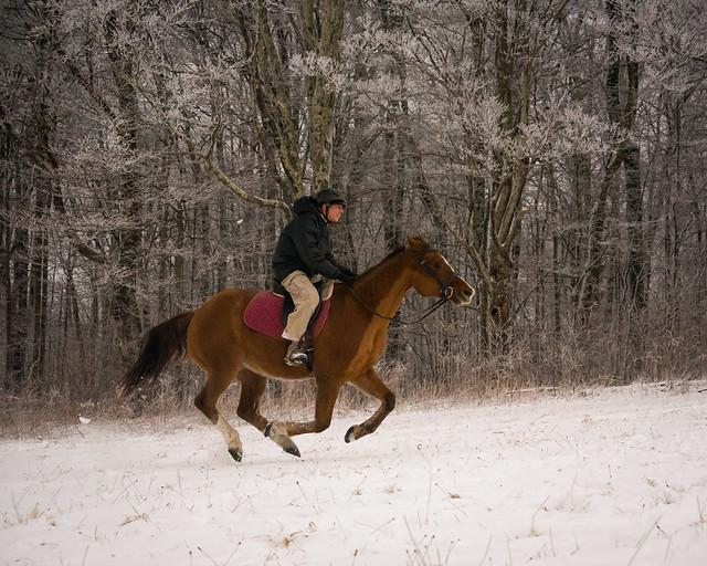 20191215 Snow Gallops_21