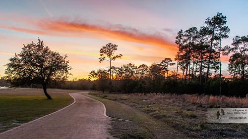 nikond700 nikkor24120mmvrii nikkorafs24120vr houston memorialpark joggingtrails ragavannatarajan ragavann sunset twilight texas