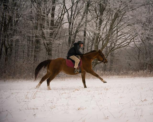 20191215 Snow Gallops_24