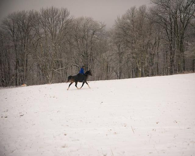 20191215 Snow Gallops_36