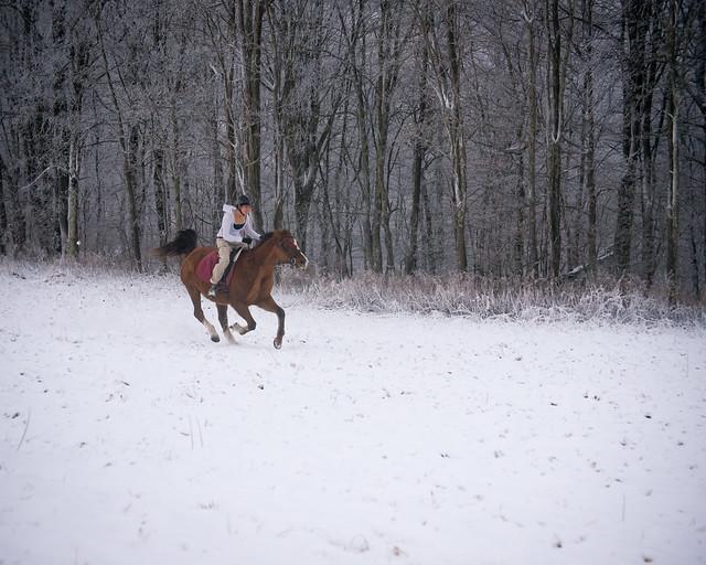 20191215 Snow Gallops_93