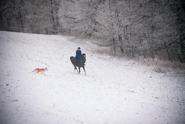 20191215 Snow Gallops_105
