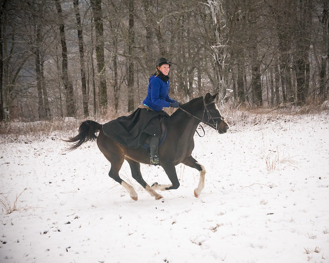 20191215 Snow Gallops_153