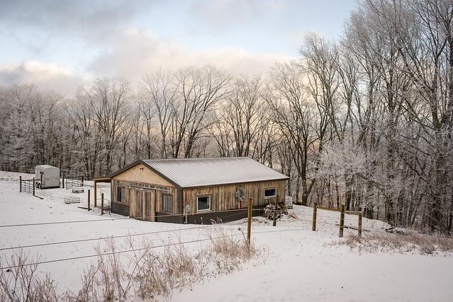 20191215 Snow Gallops_197