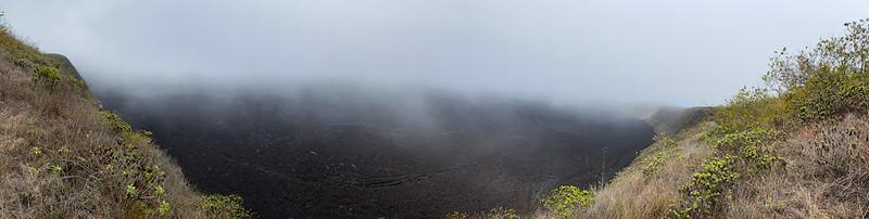 Caldera of the Sierra Negra Volcano at 980 meters (3,215 ft) above sea level, Isla Isabela (Albemarle), the Galápagos Islands, Ecuador.