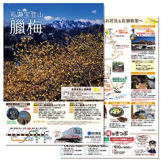 長瀞宝登山「臘梅園」パンフレット(2020年)