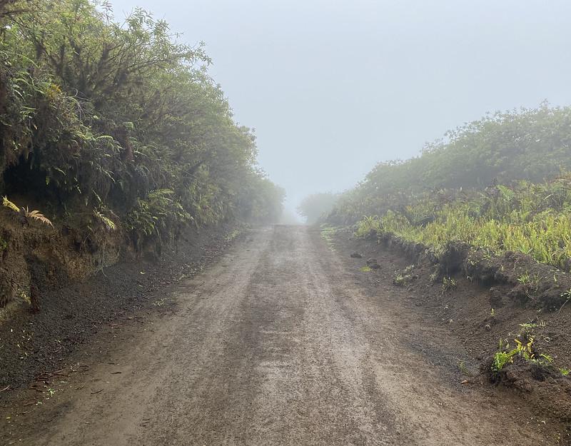 The Sierra Negra Volcano at 870 meters (2,854 ft) above sea level, Isla Isabela (Albemarle), the Galápagos Islands, Ecuador.