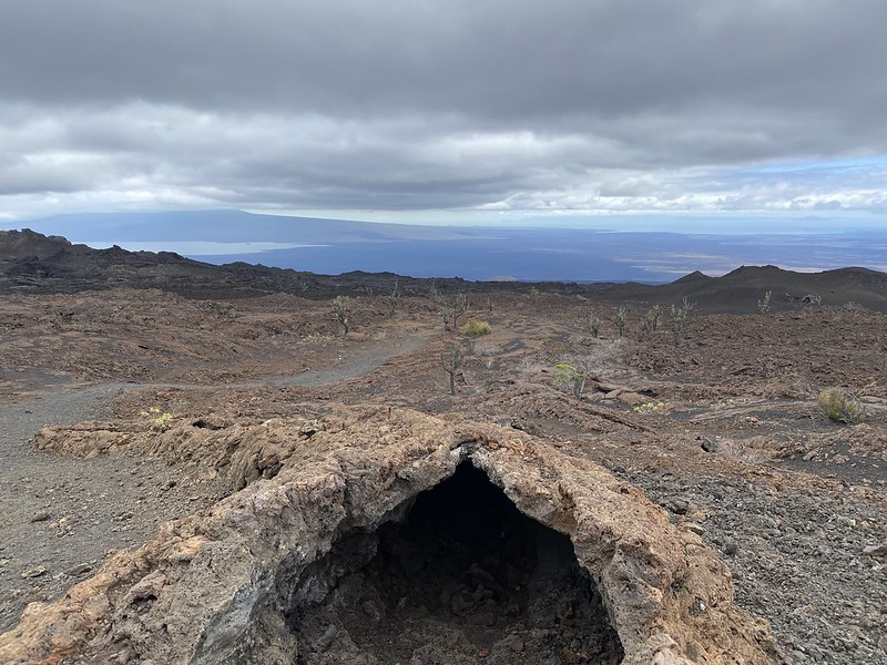 A Lava Tunnel, Sierra Negra Volcano's Last Eruption site in 2018 at 950 meters (3,116 ft) above sea level, Isla Isabela (Albemarle), the Galápagos Islands, Ecuador.