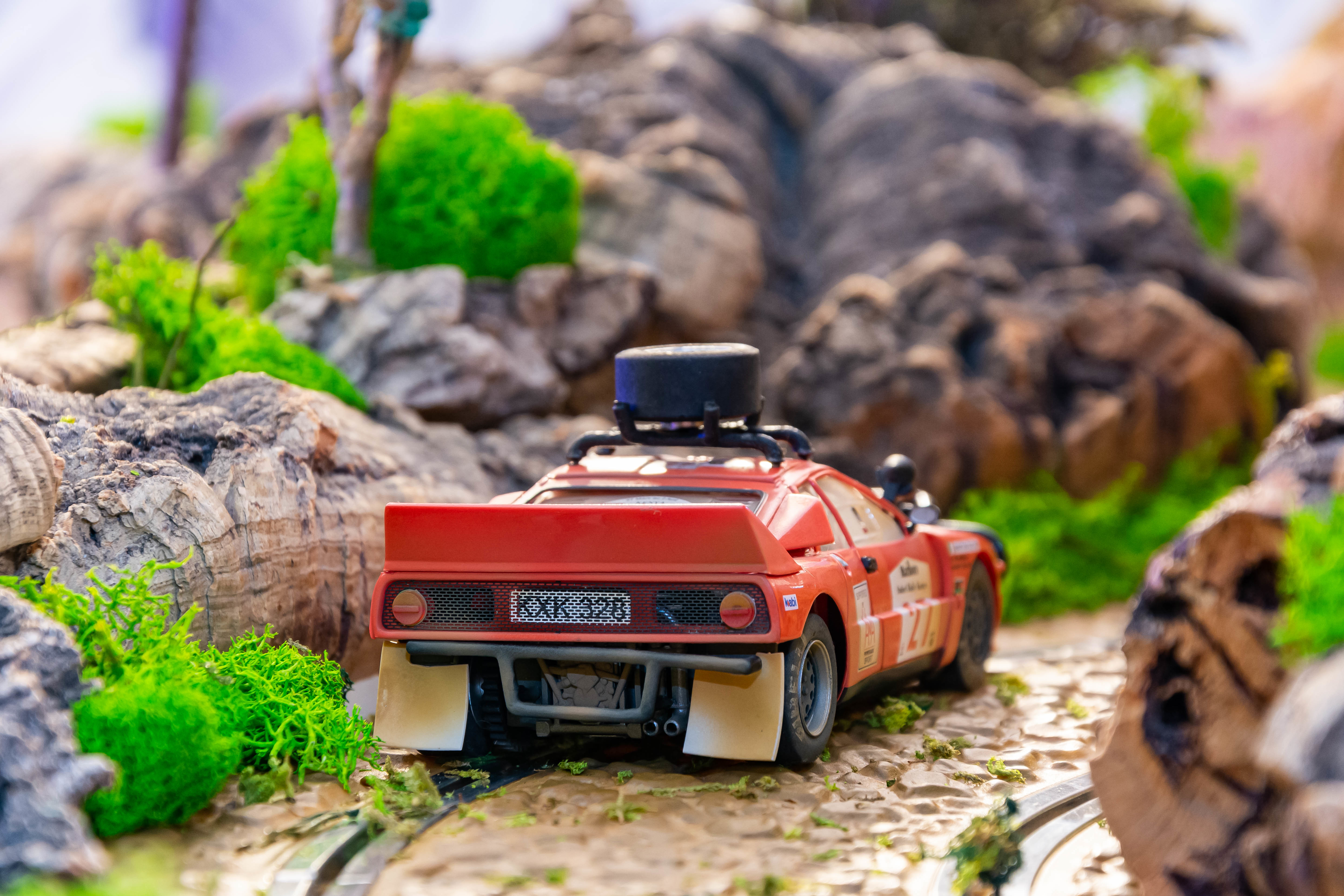 037 Rally Safari