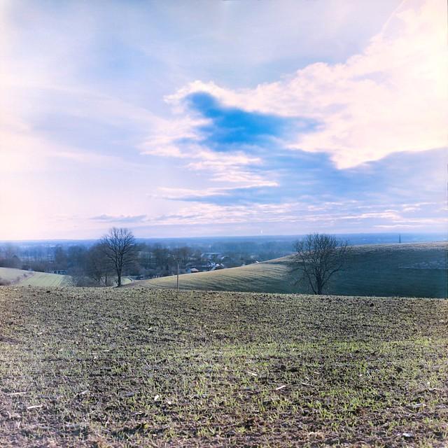Landscape in Color