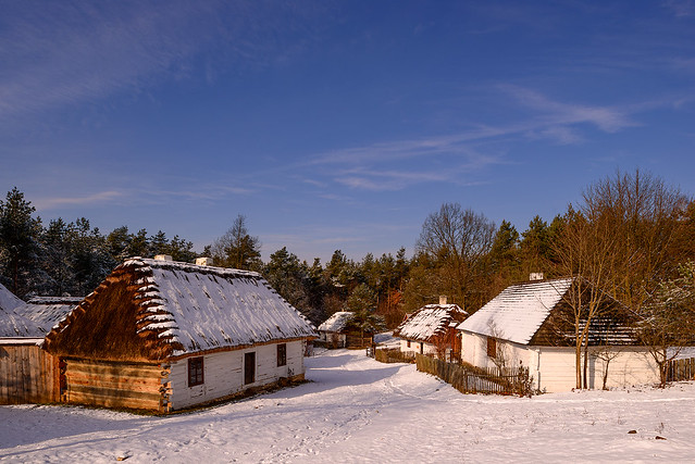 In the winter scenery
