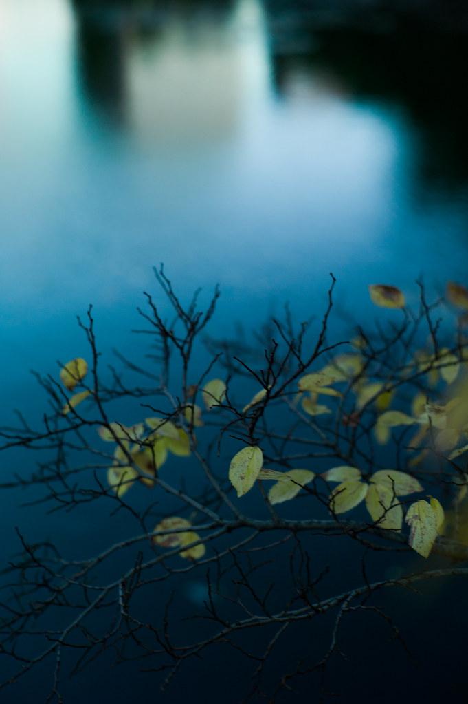 waterside autumn