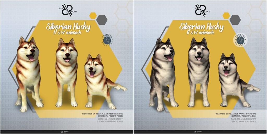 [Rezz Room] Siberian Husky Animesh