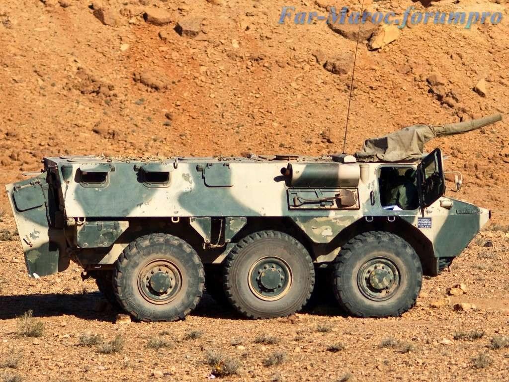Renault VAB VTT et VCI des Forces Armées Royales 49269203256_e0e673a220_b
