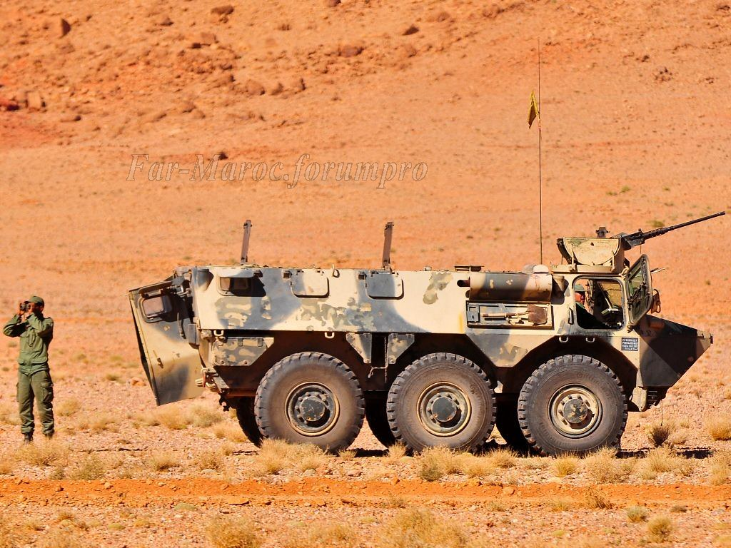 Renault VAB VTT et VCI des Forces Armées Royales 49269404097_d6255abb96_b