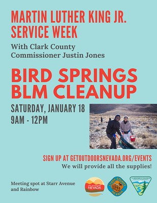 Bird Springs BLM Area Cleanup