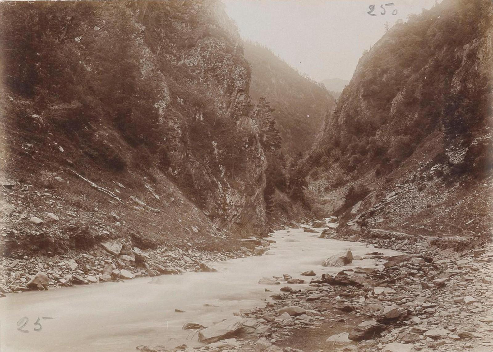 02. Восточный Кавказ. Аргунское ущелье (выше Шатили), июль
