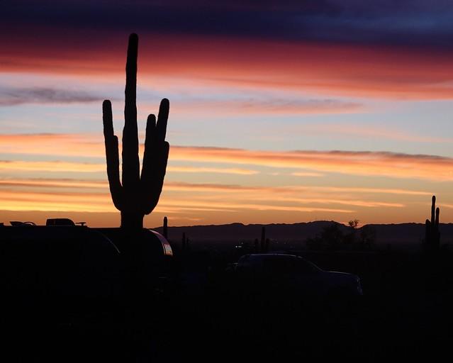 Desert Campground Sunrise SR601501