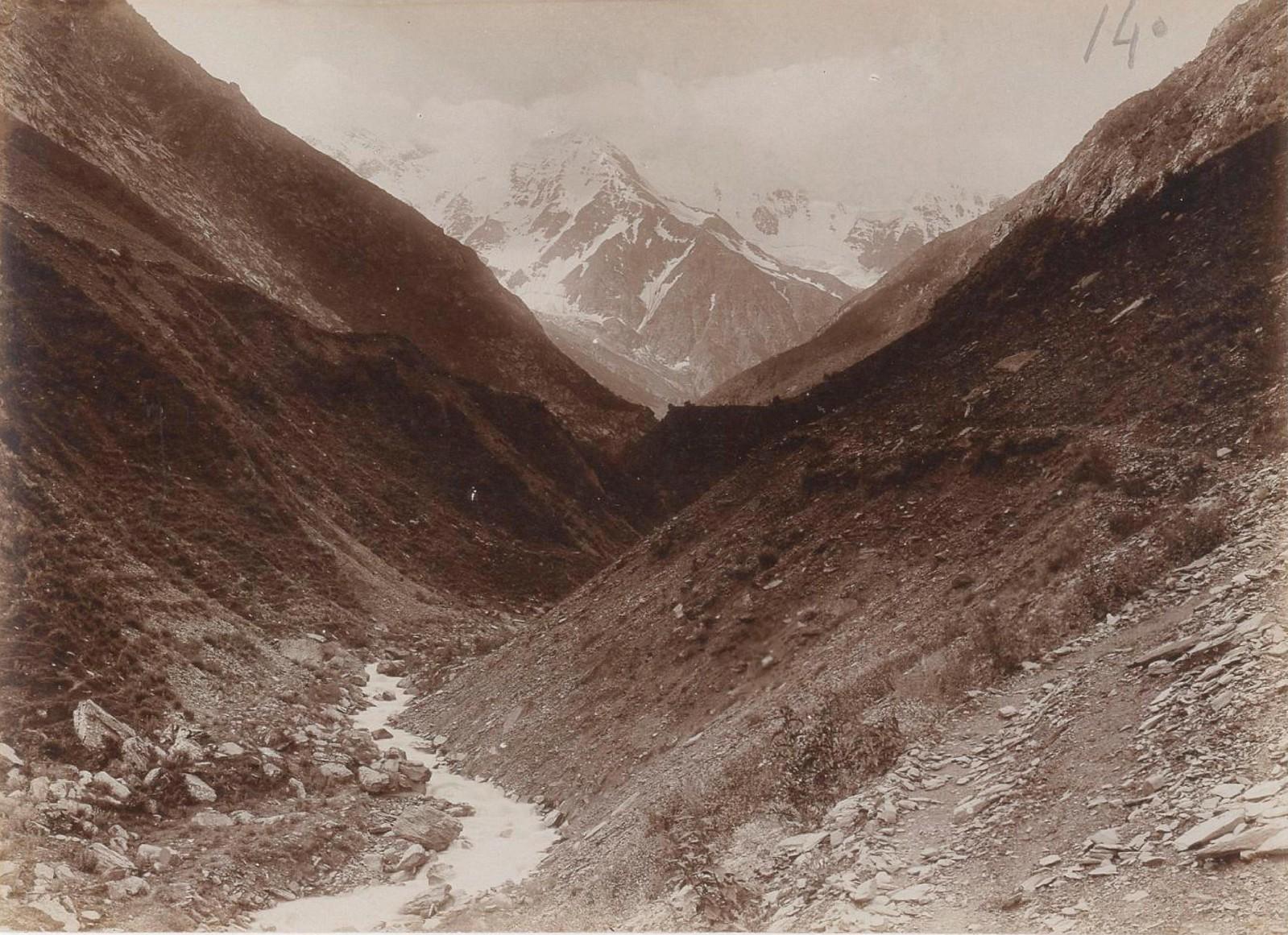19. Восточный Кавказ. Диклосмта из долины Харгабе. Июль