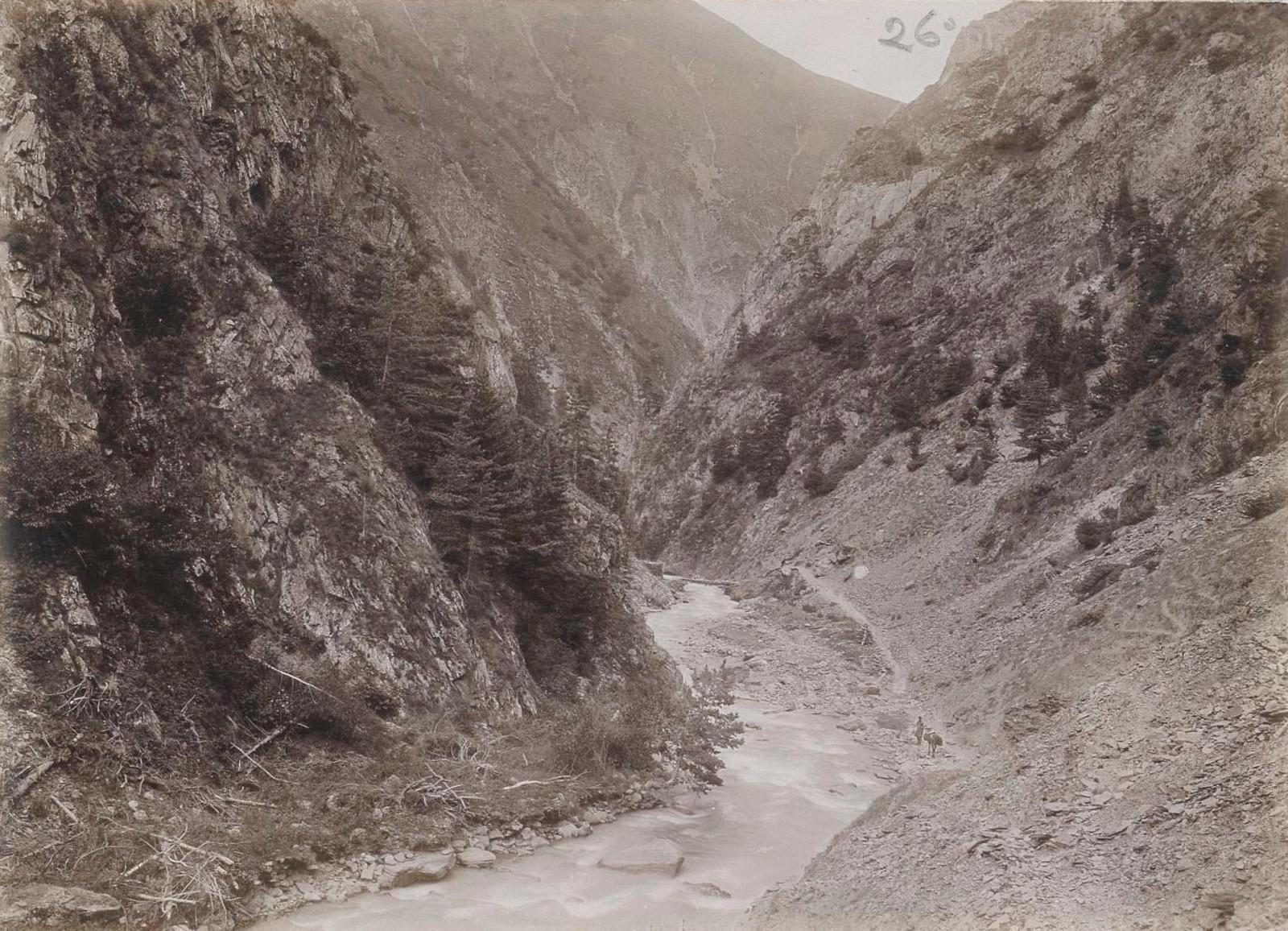 03. Восточный Кавказ. Аргунское ущелье (выше Шатили), июль