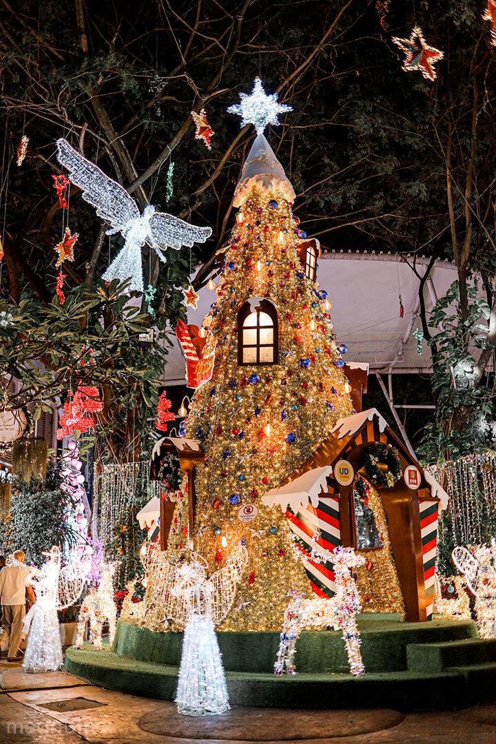 รูปถ่ายต้นคริสมาสต์. UD Town อุดรธานี