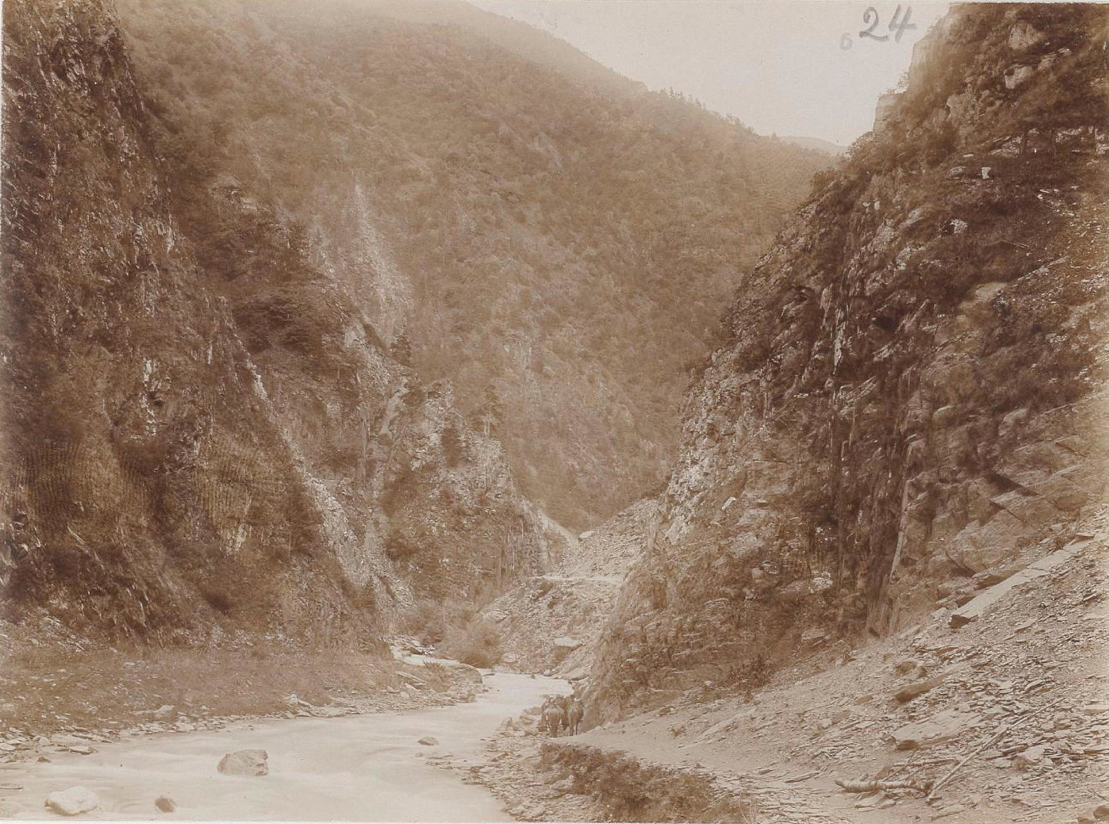 04. Восточный Кавказ. Аргунское ущелье (выше Шатили), июль