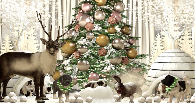 Majesty- Merry Christmas 2019