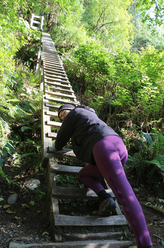 We decided to check out the first ladders on the WCT as a day-hike - very sturdy but also very tall - hold tight