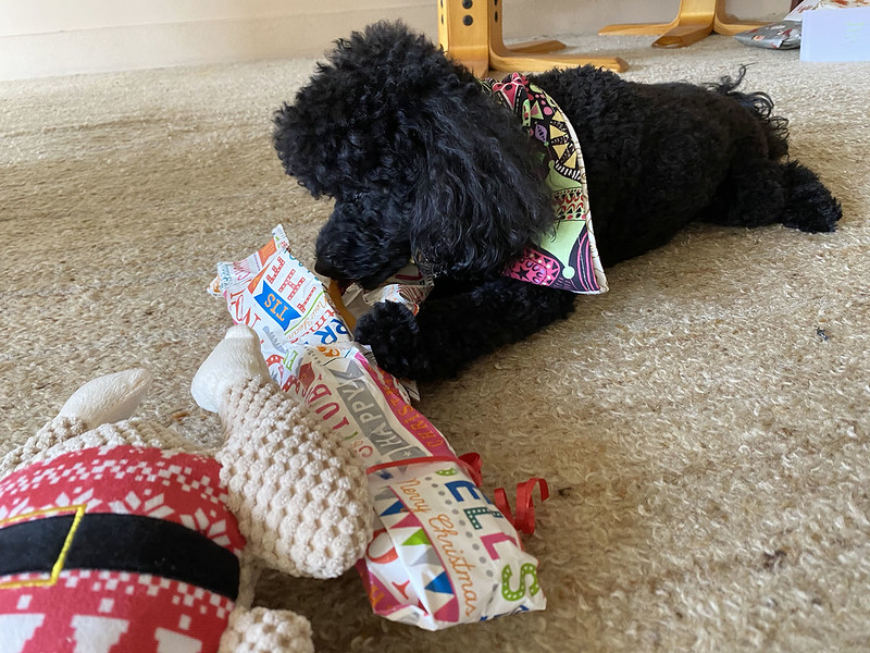 Scully opening Christmas presents