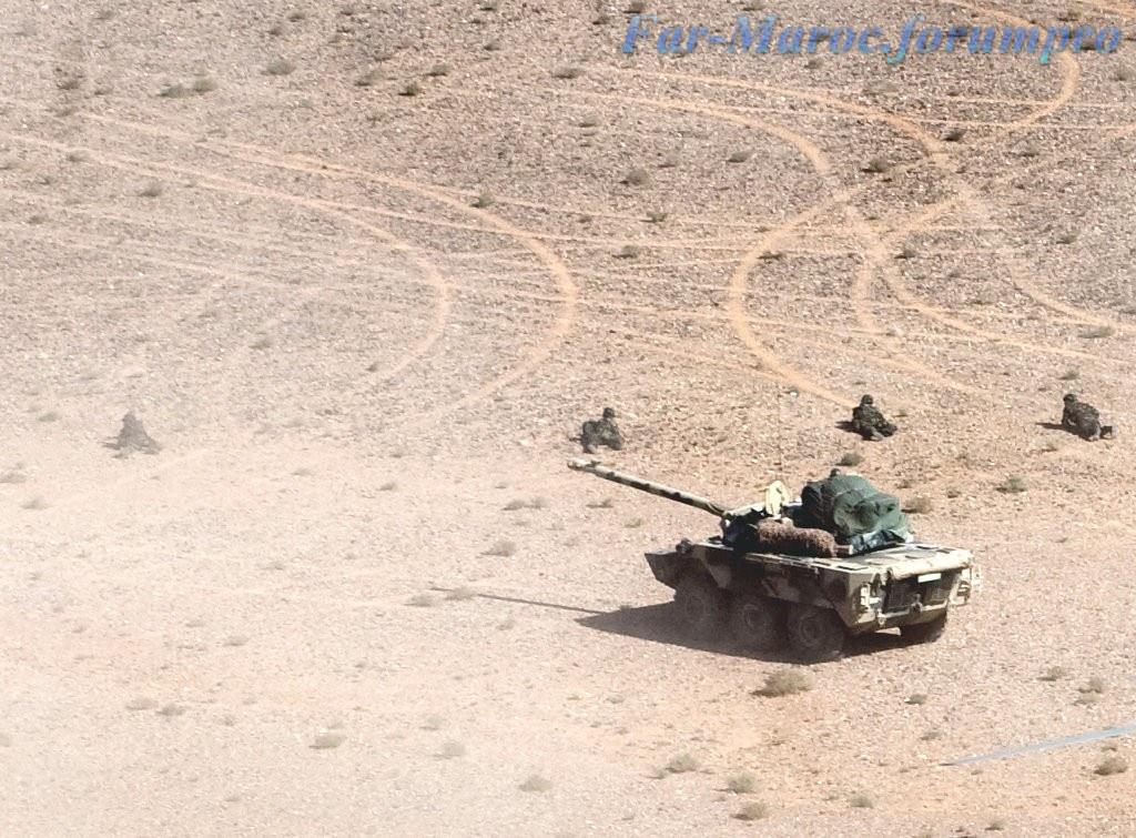 AMX-10RC des FAR // Moroccan AMX-10RC 49273163256_6c3b5effb7_b