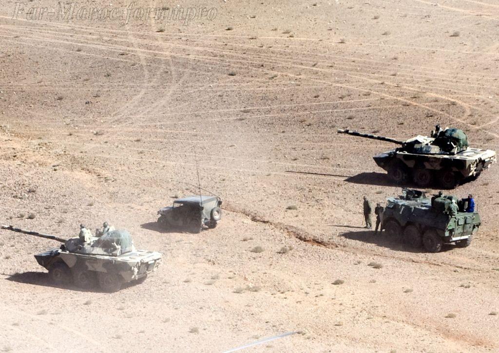 AMX-10RC des FAR // Moroccan AMX-10RC 49273165141_f8942e16bc_b