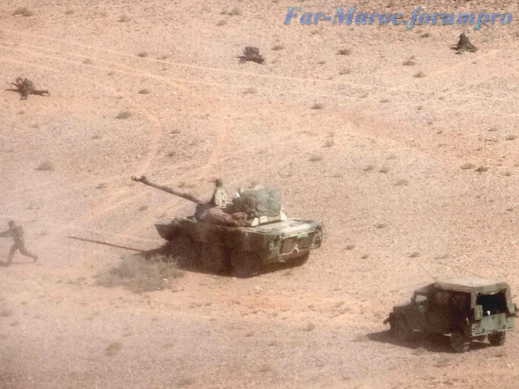 AMX-10RC des FAR // Moroccan AMX-10RC 49273359877_bff3c70d55_b