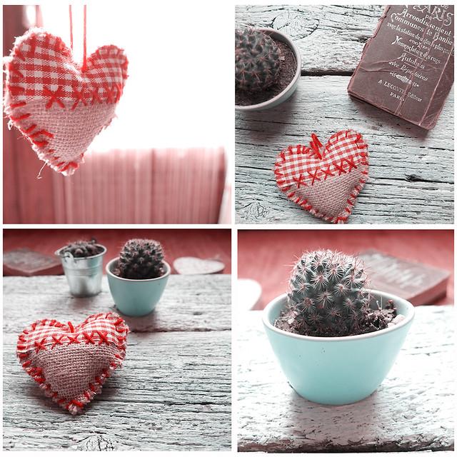 Xmas days -- Cactus and Heart