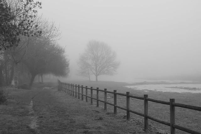 Poitiers en la niebla