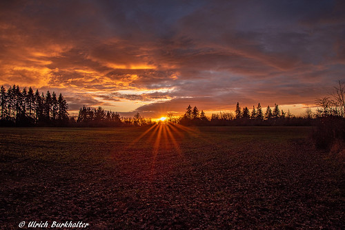 sunset 20191119 hamdenst img42942pedited1