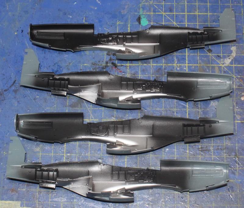 N.A. P-51D Mustang, Eduard 1/48 49275266052_bf5360bcea_c
