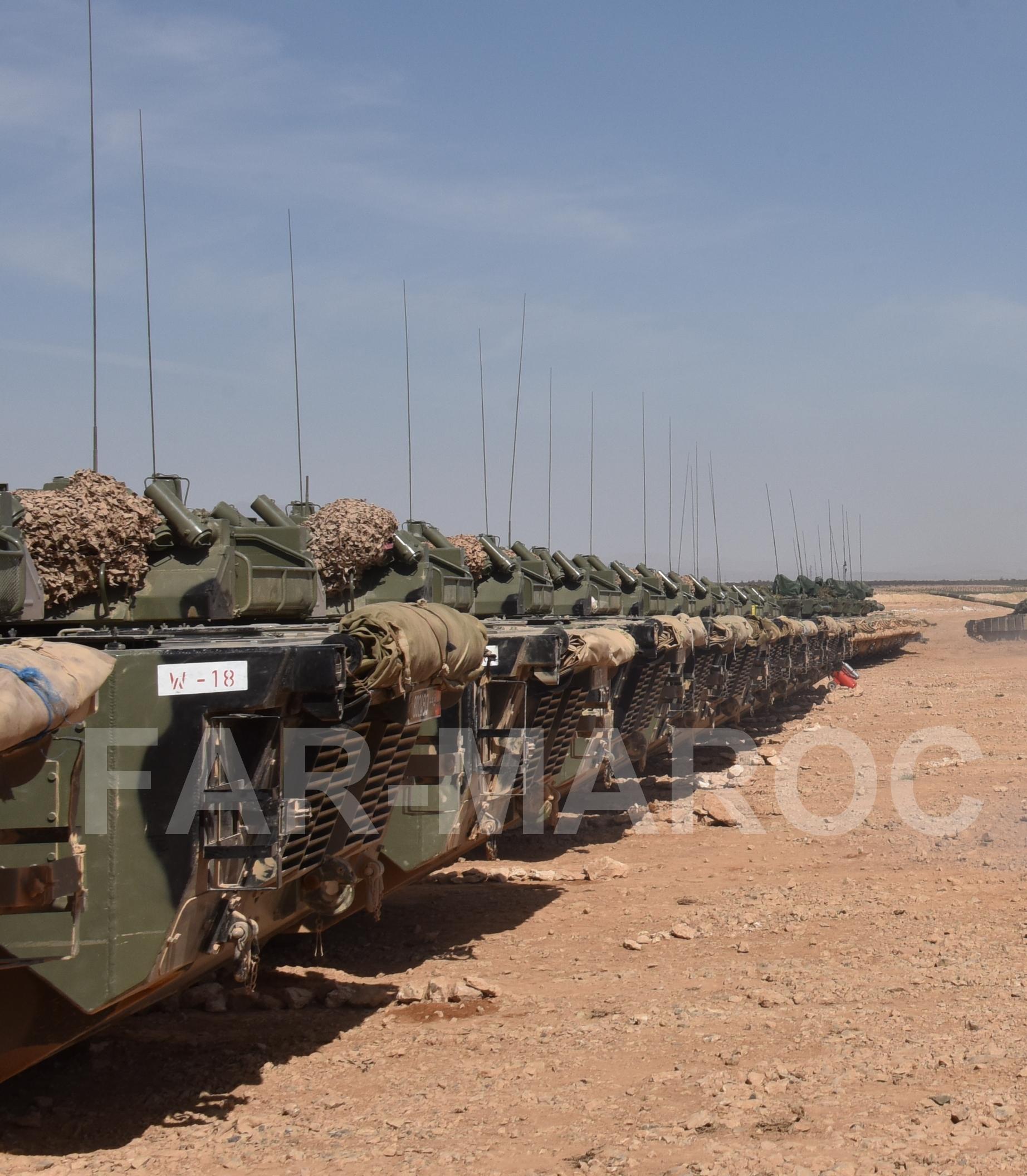 AMX-10RC des FAR // Moroccan AMX-10RC 49275611846_fd453340ab_o